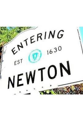 entering newton